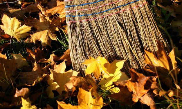 El Día Mundial de Limpieza del Planeta: La mayor movilización civil de la historia