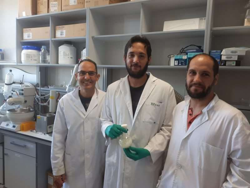 De izquierda a derecha, Juan Carlos Morales, Efres Belmonte Reche y Pablo Peñalver Puente, parte del equipo de investigación del Instituto López-Neyra. Foto: Fundación Descubre