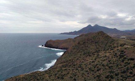 Un proyecto para recuperar el hábitat del Azufaifo en el Cabo de Gata