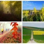 """Fotos ganadoras del concurso """"Los colores del Camino"""""""