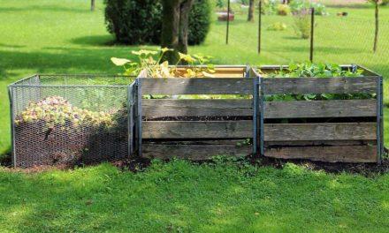 Beneficios del compostaje en la lucha frente al cambio climático