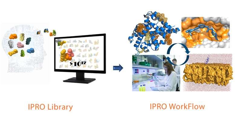 La biotecnológica Iproteos abordará el diseño, síntesis y caracterización de las moléculas inhibidoras de la interacción de ambas proteínas, talina y vinculina, mediante su plataformaIPROTech