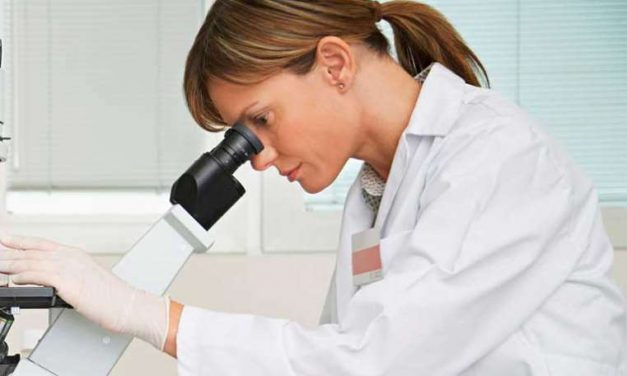 Nueva terapia de fotosensibilizadores contra el cáncer