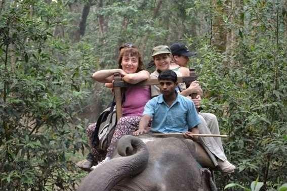 En las densas junglas subtropicales del parque nacional de Chitwan es posible ir en busca del poderoso Tibre de Bengala y del rinoceronte blanco