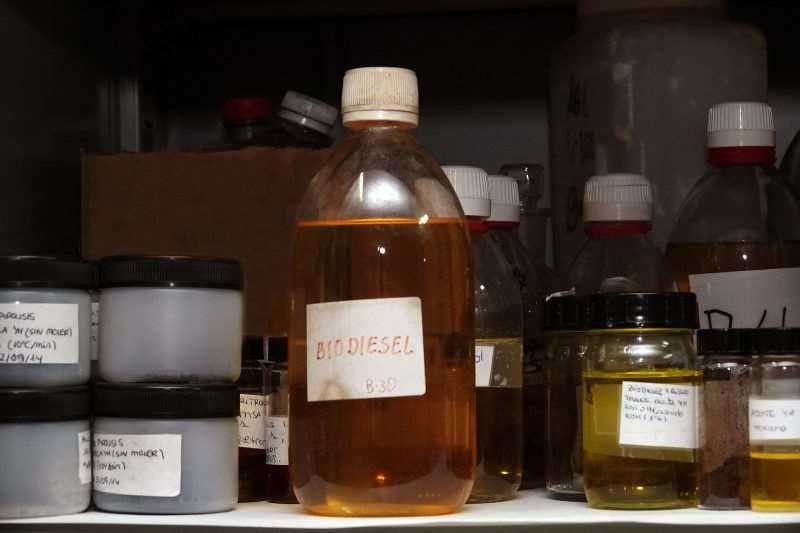 Biodiesel, elaborado por los investigadores a partir de biomasa. Foto cortesía de la UMA