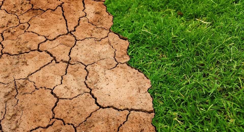Desde Ecoherencia sostienen que «el cambio climático se ha convertido en la gran urgencia ambiental de nuestro tiempo