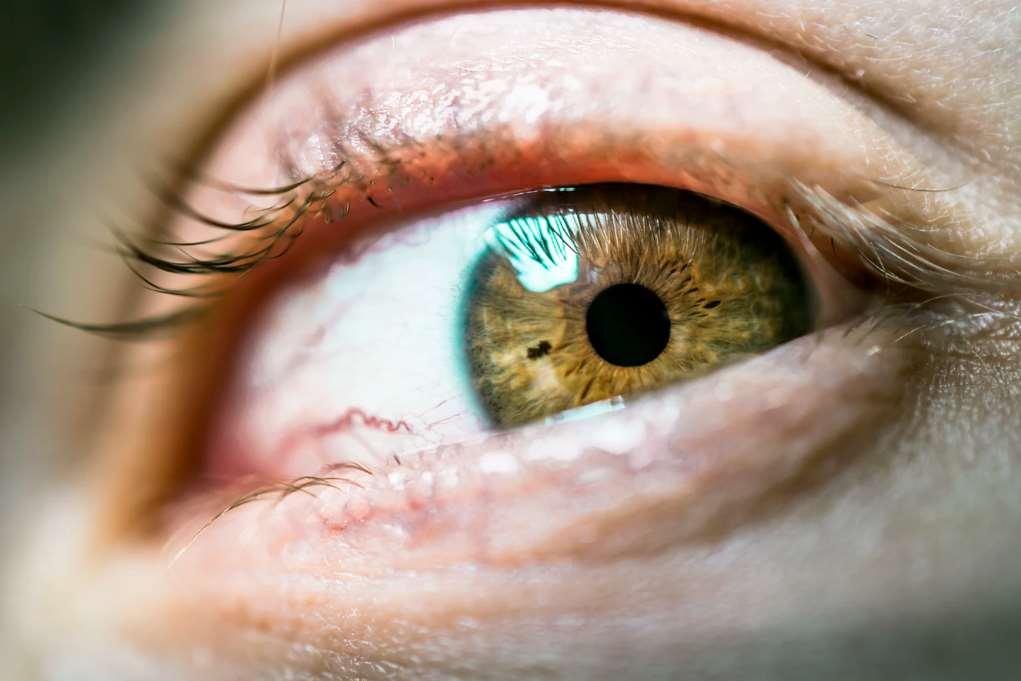 Científicos mexicanos crean un nuevo tipo de lentillas que se disuelven en minutos en los ojos y liberan gradualmente un medicamento auxiliar en afecciones
