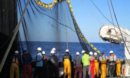 La flota atunera española es la primera del país que se suma al pacto mundial de la ONU