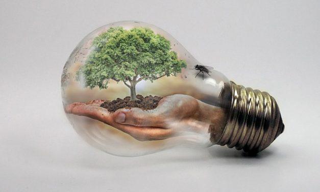 El plan de energía y clima que se presentó hoy es positivo aunque insuficiente