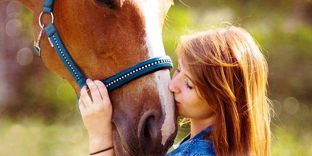 esclerosis múltiples, caballos