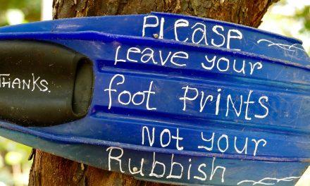 Plástico y Salud: el Coste oculto de un planeta de plástico, un informe revelador