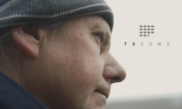 73 vacas, la película vegana vuelve a proyectarse logrando un gran éxito de visualización