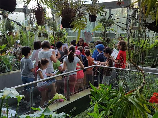 El campamento de verano del RJB educará en la biodiversidad y el equilibrio