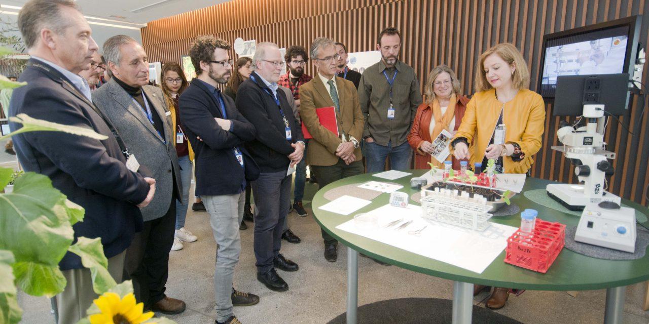 Jaén exhibe cómo ampliar las defensas para evitar el estrés de las plantas