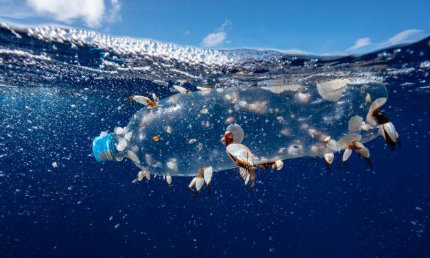 La expedición más ambiciosa para reinvidicar la protección de los océanos