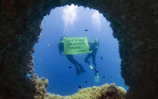 El informe 30×30 revela 10 maneras de proteger los océanos