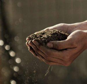 En la evaluación señala acertadamente a la ganadería y agricultura a gran escala como unas de los principales culpables del deterioro socioambiental