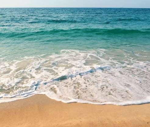 Ese día se separarán residuos para sensibilizar sobre los problemas de la contaminación del litoral y conocer cuáles son las principales amenazas