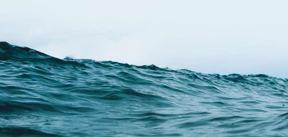 Limpiemos el Mar en los Baños del Carmen
