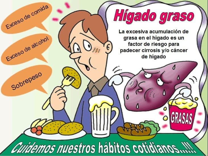 La enfermedad del hígado graso no alcohólico podría combatirse con 'Mitofusina 2'