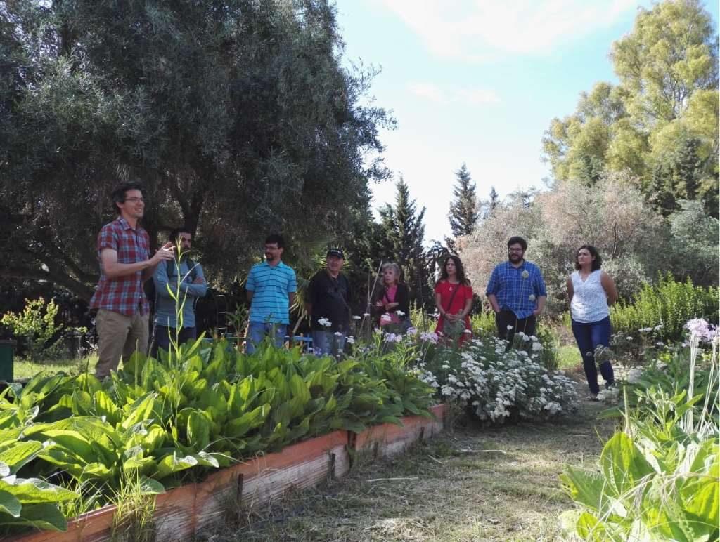 Alberto Jiménez, de Ecoherencia, nos explicó el trabajo que están realizando en este huerto con plantas multifuncionales (PlaM)