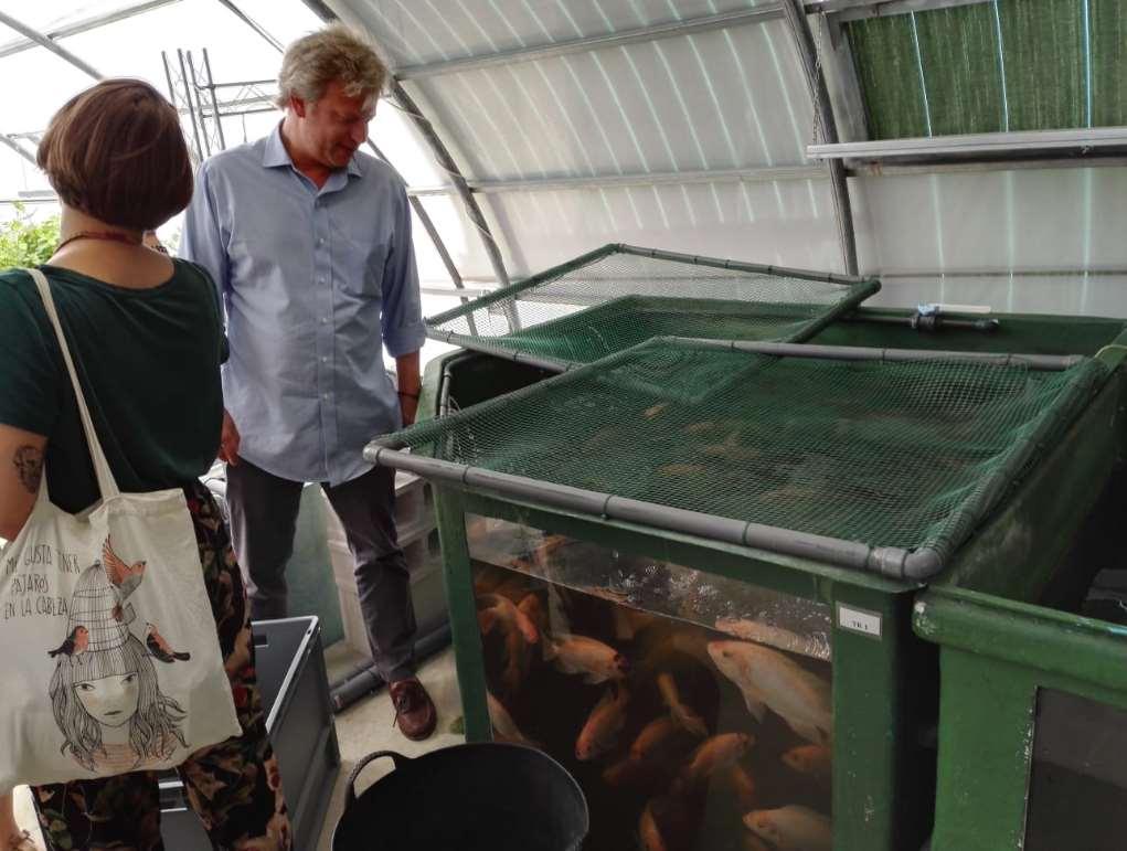 instalaciones de acuoponía del Aula del Mar