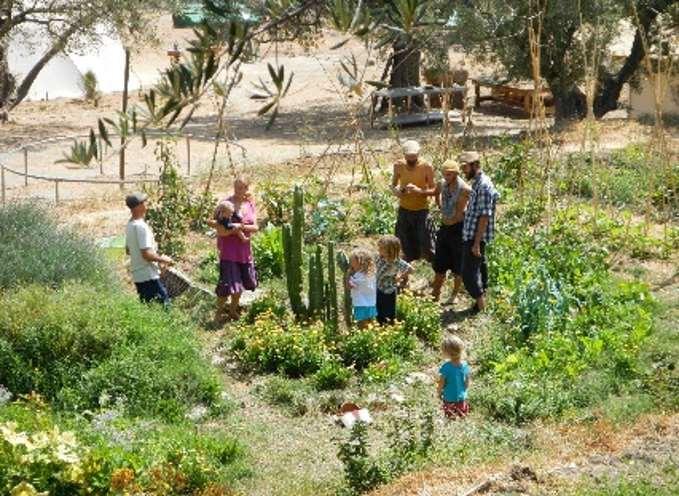 Amoraleza ofrece retiros de permacultura