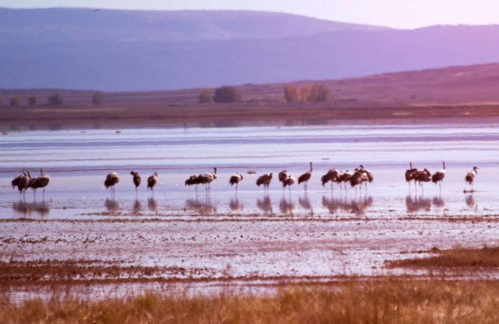 Este informe estudia por primera vez la relación entre el cambio climático y los usos del suelo