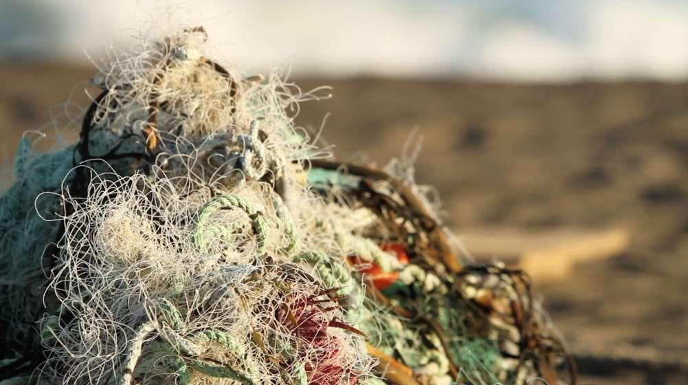 Net100-Net+Positiva ha recogido hasta junio pasado, y seis meses antes del objetivo marcado, 100 toneladas de redes de pesca a lo largo de la costa de Chile