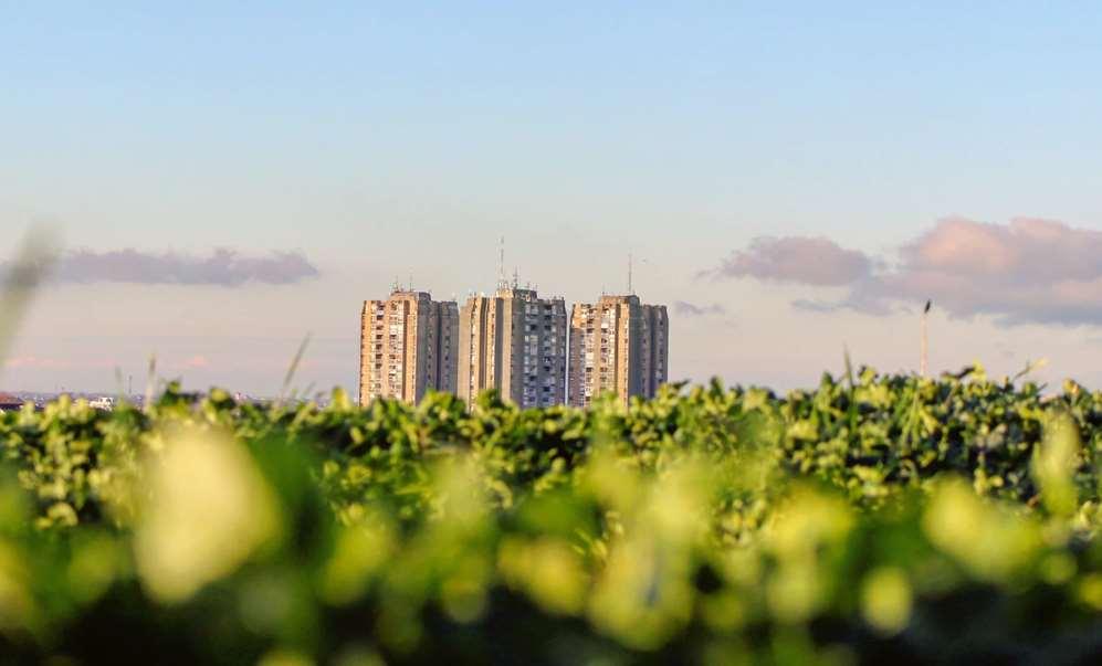 """Jornada """"Municipios 2030. Las nuevas economías y la innovación social como herramientas locales para alcanzar los Objetivos de Desarrollo Sostenible (ODS)"""""""