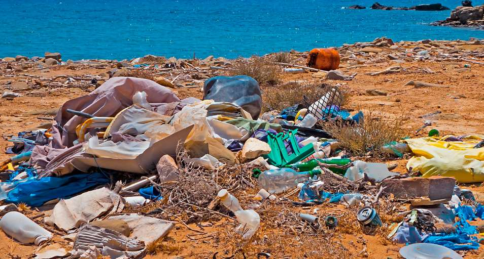 La contaminación por plásticos es uno de los principales problemas ambientales y económicos de esta década