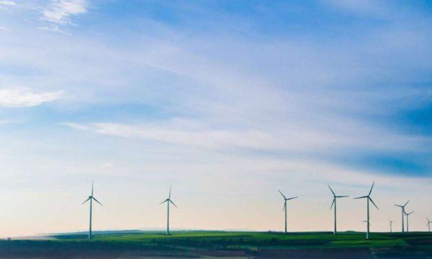 10 medidas para luchar contra la emergencia climática que el nuevo Gobierno de España debe implementar cuanto antes