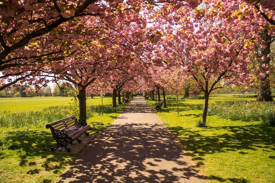 Hyde Park: uno de los secretos que esconde Londres