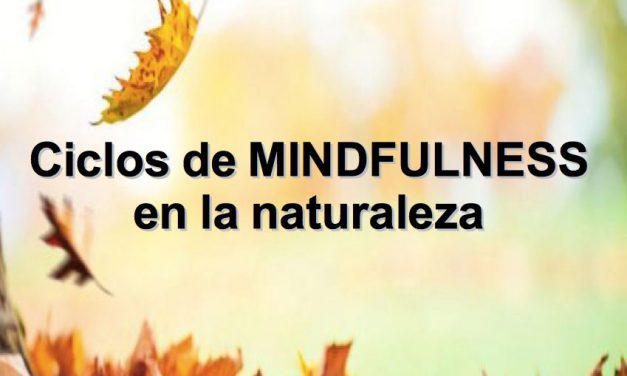 Retiro de MINDFULNESS en la Naturaleza (Montes de Málaga)