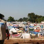 10 años de Solidaridad con Haití