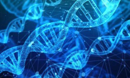 Publican ENCODE 3 el catálogo más completo para interpretar nuestro genoma