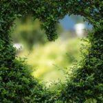 Proyecto europeo FlowPhotoChem para convertir el CO2 en productos químicos limpios