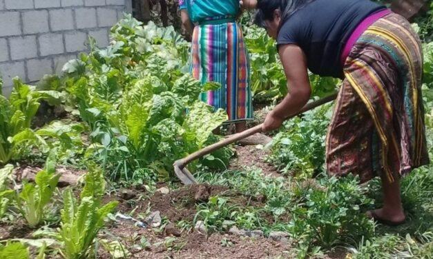 Crowdfunding de Kemonïk ONG para ayudar a mujeres y niños de Guatemala