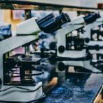 'Capillary.io': inteligencia artificial para el diagnóstico de enfermedades autoinmunes