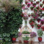 Fiesta de los Patios 2020: Córdoba celebra una edición especial en octubre