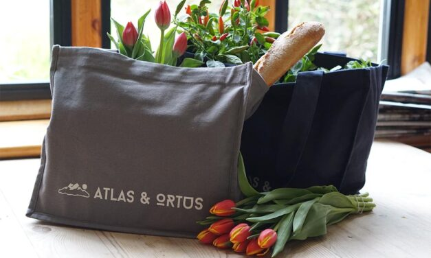 5 Razones que te harán usar bolsas personalizadas ¡desde ya!