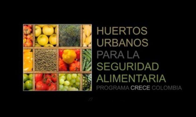 Un equipo de madrileños crea un crowdfunding para proveer seguridad alimentaria a familias ruralescolombianas afectadas por el Covid-19