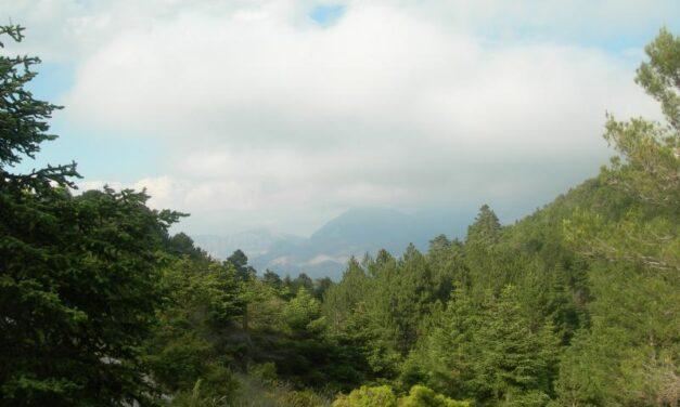 La Sierra de las Nieves (Málaga) será declarada Parque Nacional