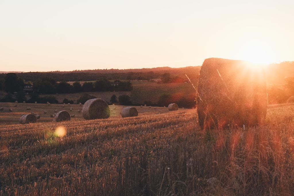 La agricultura campesina y la soberanía alimentaria tienen un importante papel para abordar algunos de los problemas mundiales más acuciantes.