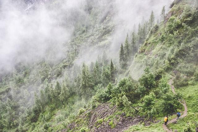 Una selva tropical de Perú lleva inalterada 5.000 años gracias a poblaciones indígenas