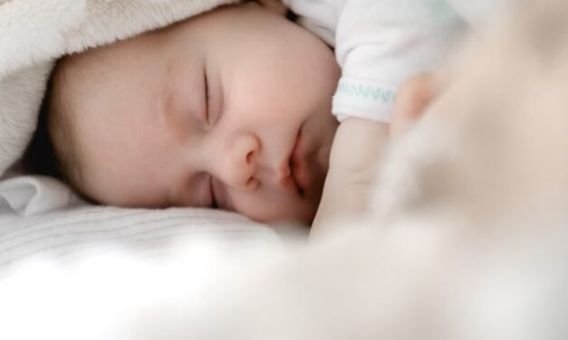Los pediatras aseguran que el estilo de vida de la madre marcan la salud futura del bebé