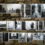Una exposición fotográfica virtual difunde el trabajo de Fontilles por los ODS