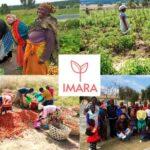 IMARA 2, una cooperativa agraria para mujeres en Tanzania